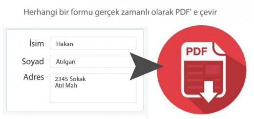 pdfcevir