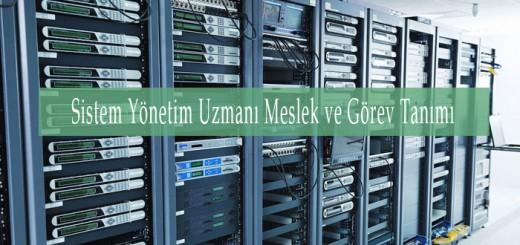sistem_uzmani